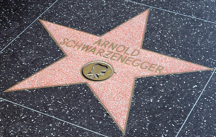 Bild posten Die 5 besten deutschen Schauspieler in Hollywood Arnold Schwarzenegger - Die 5 besten deutschen Schauspieler in Hollywood